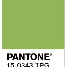 Pantone's Color of the Year 2017 Will Really Grow on You